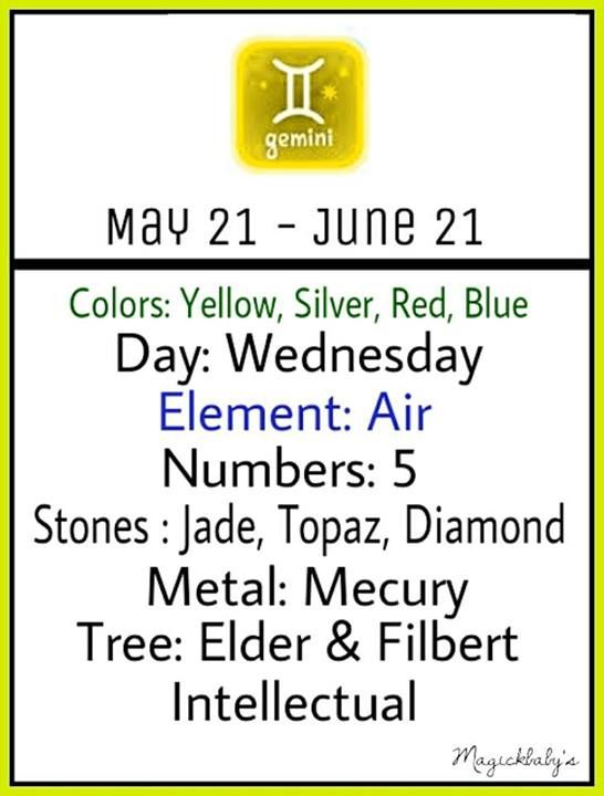 I can't get over the fact that the first thing it says for tree is Elder! The Elder wand!!! :o