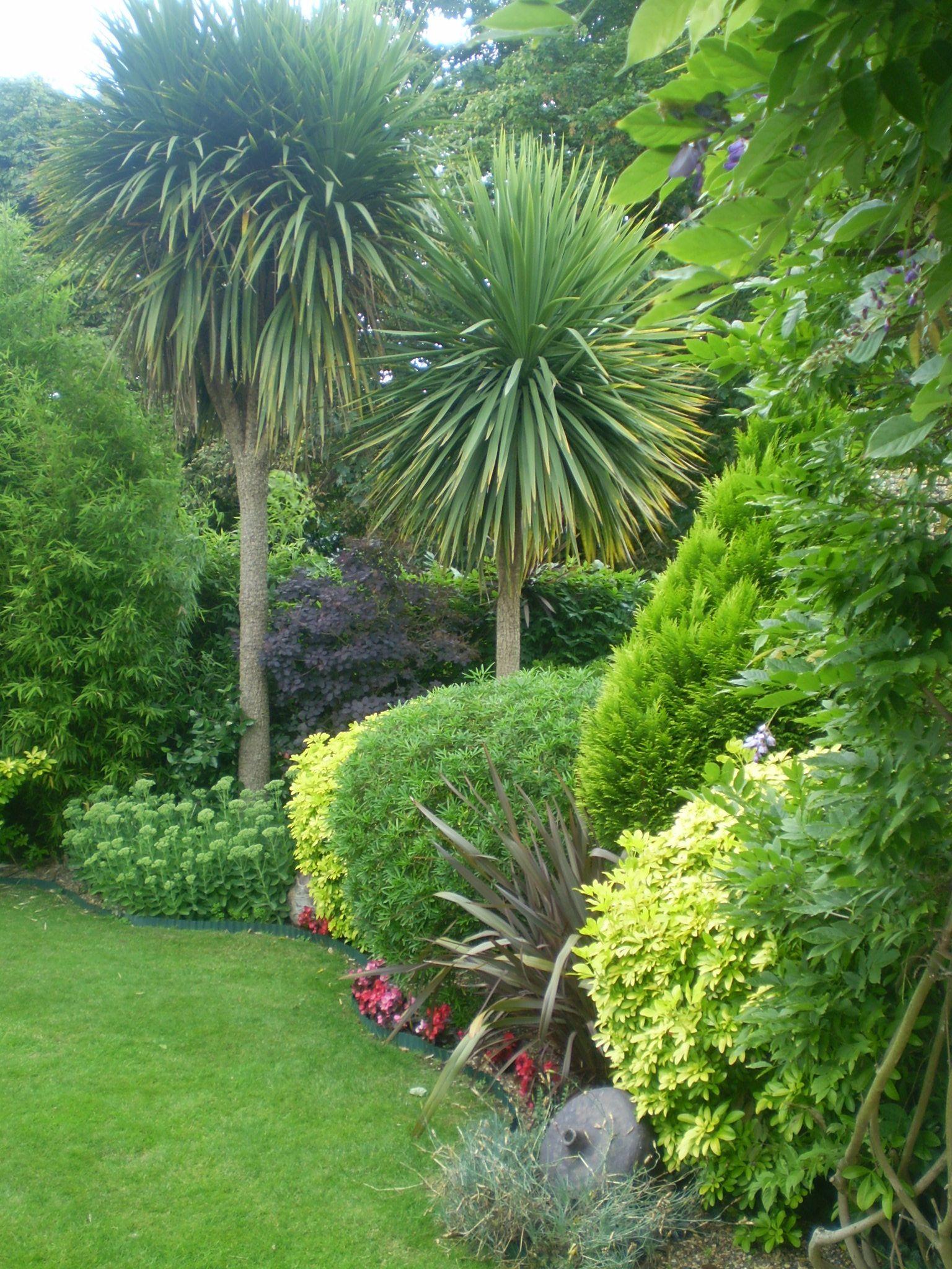 luciana cordery garden design uk evergreen garden foliage