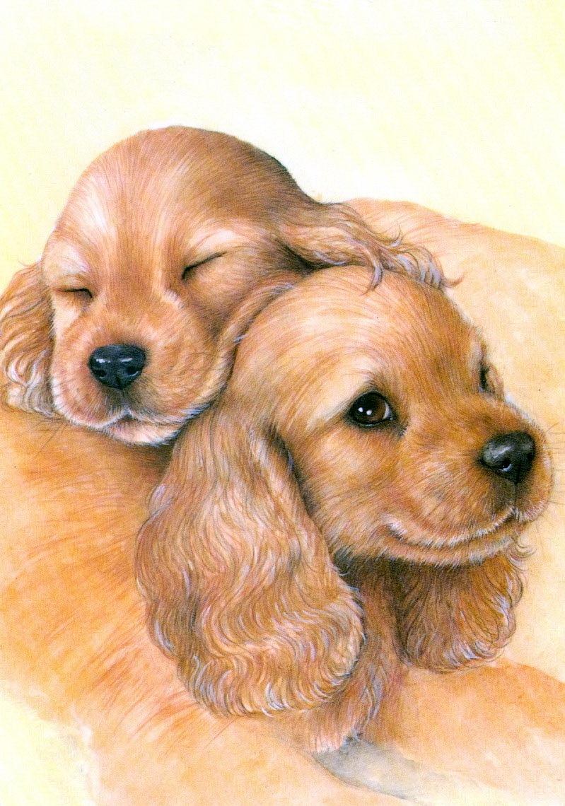 вакансии фото открытки с щенками современная развлекательно-музыкальная