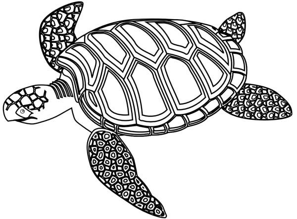 Green Sea Turtle In Mozaic Coloring Page