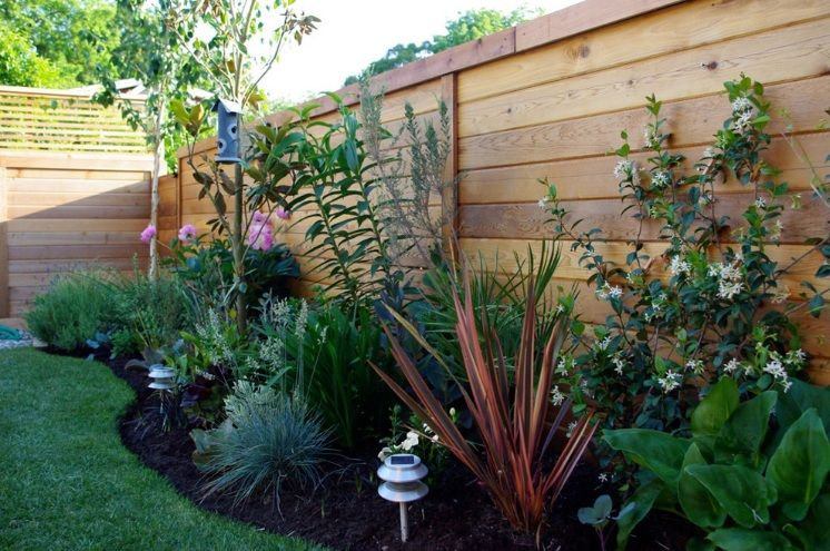 A variety of low maintenance and drought tolerant plants for Low growing plants for landscaping