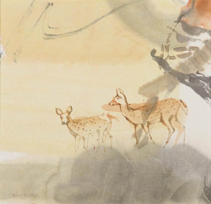 Spotted Deer, Watercolour & Ink, Indian Tigerlands The