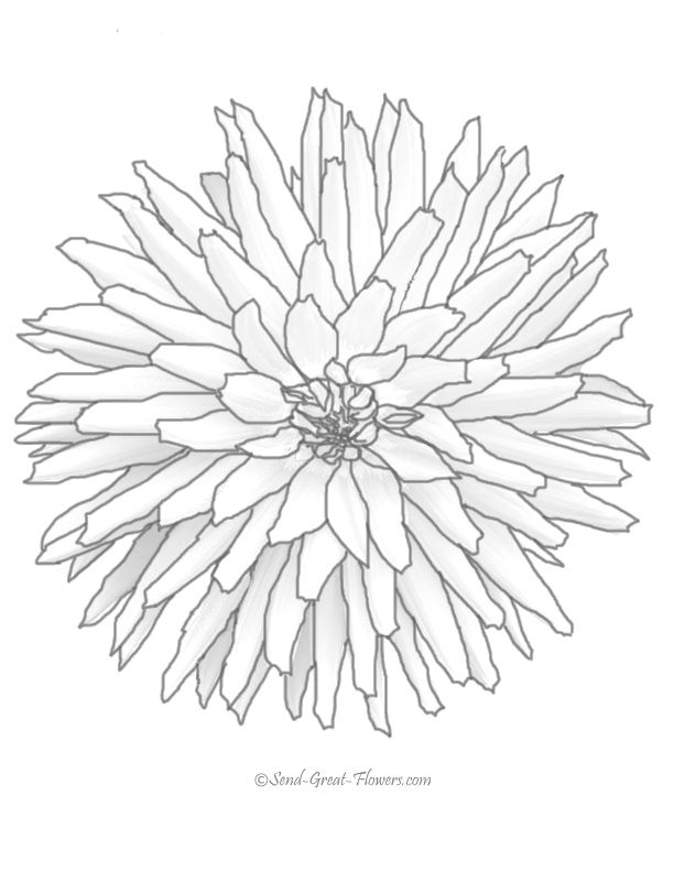 flower coloring pages difficult difficult flower free coloring pages on masivy world free printable