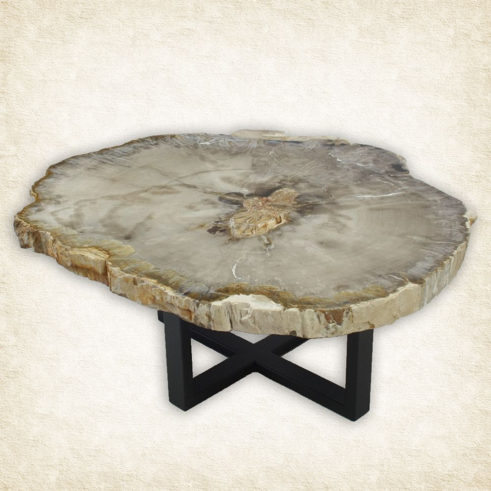Coffee table side table petrified wood