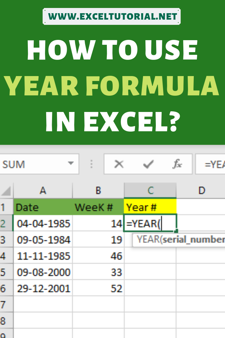How to use YEAR Formula in Excel   Excel tutorials, Microsoft ...