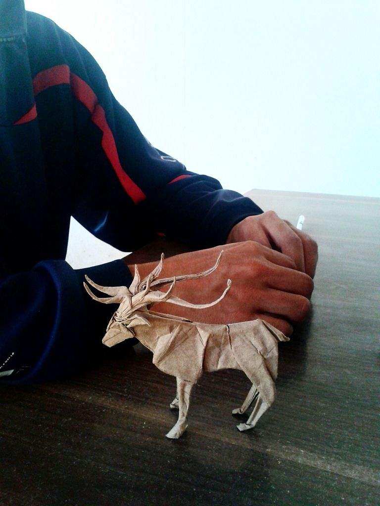 Deer Satoshi Kamiya By Javier Vivanco Origami Video Diagram Quotswan Quyetquot