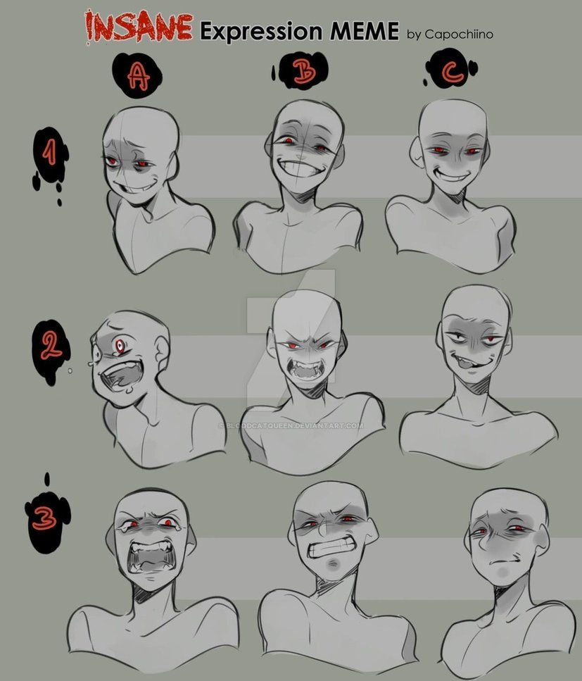 Insane Expression Meme By Https Www Deviantart Com Bloodcatqueen On Deviantart Drawing Face Expressions Drawing Expressions Art Reference Poses
