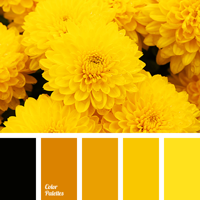 Color Palette 2665 Color Palette Yellow Color Palette Yellow