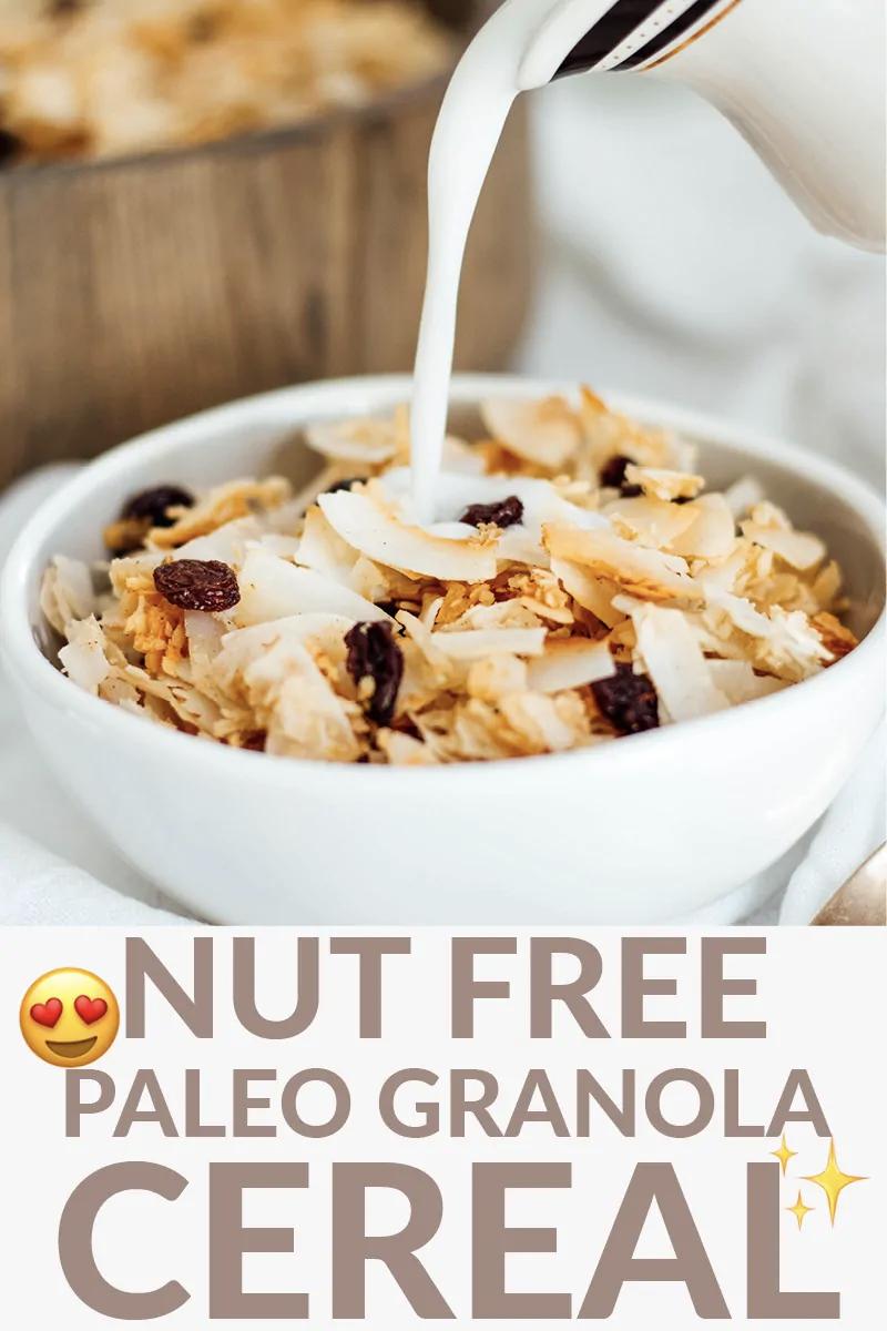 Cinnamon Raisin Nut Free Paleo Granola Cereal Recipe In 2020 Paleo Granola Granola Paleo Granola Cereal
