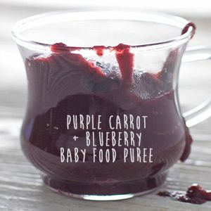 how to make a blueberry puree