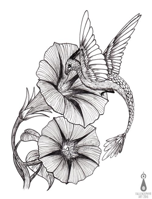 Morning Glory Drawing Morning Glory Sketch Morning Glory Tattoo Flower Sketches Morning Glory Flowers