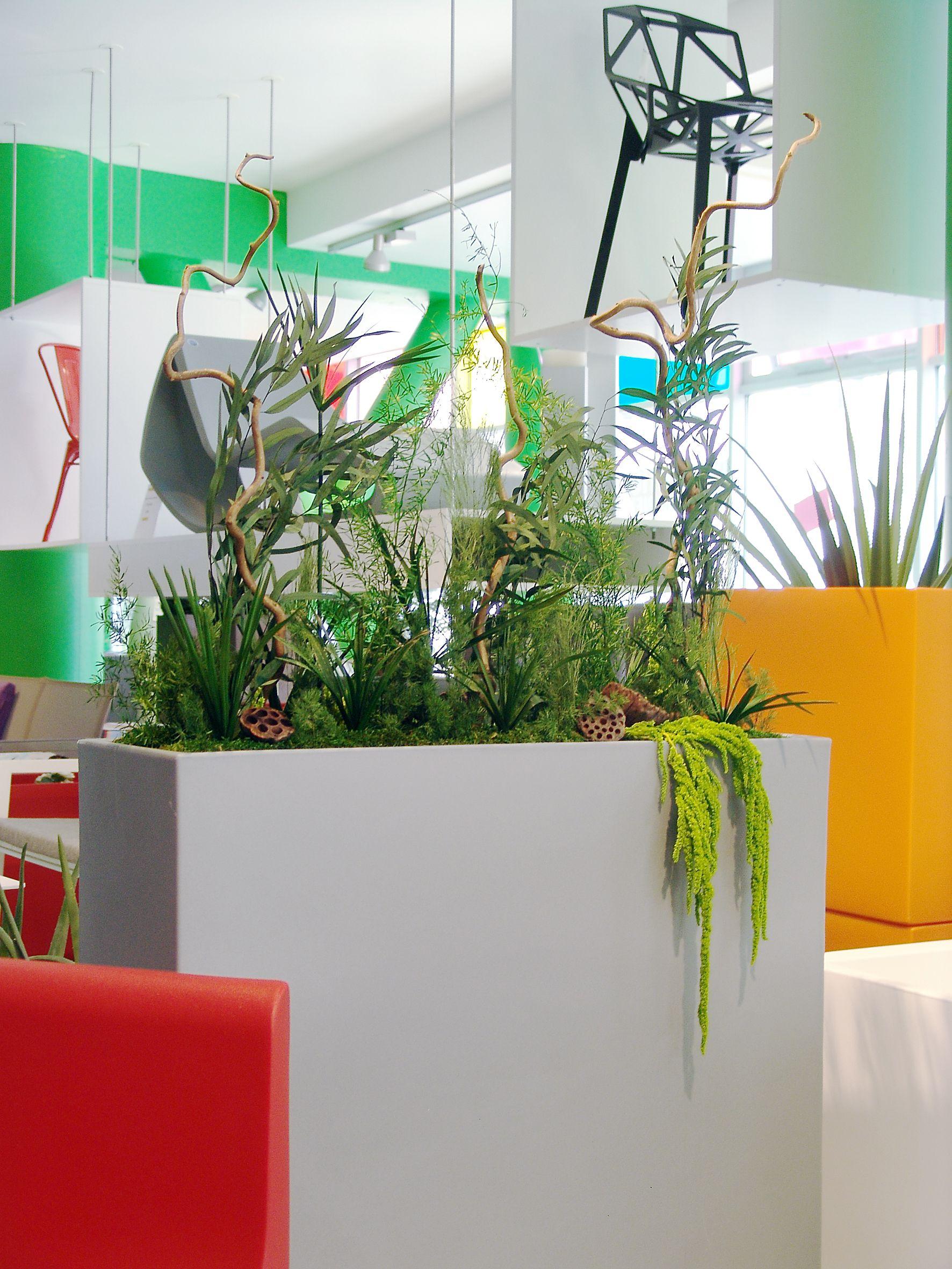 Design végétal, décoration végétale, végétaux stabilisés