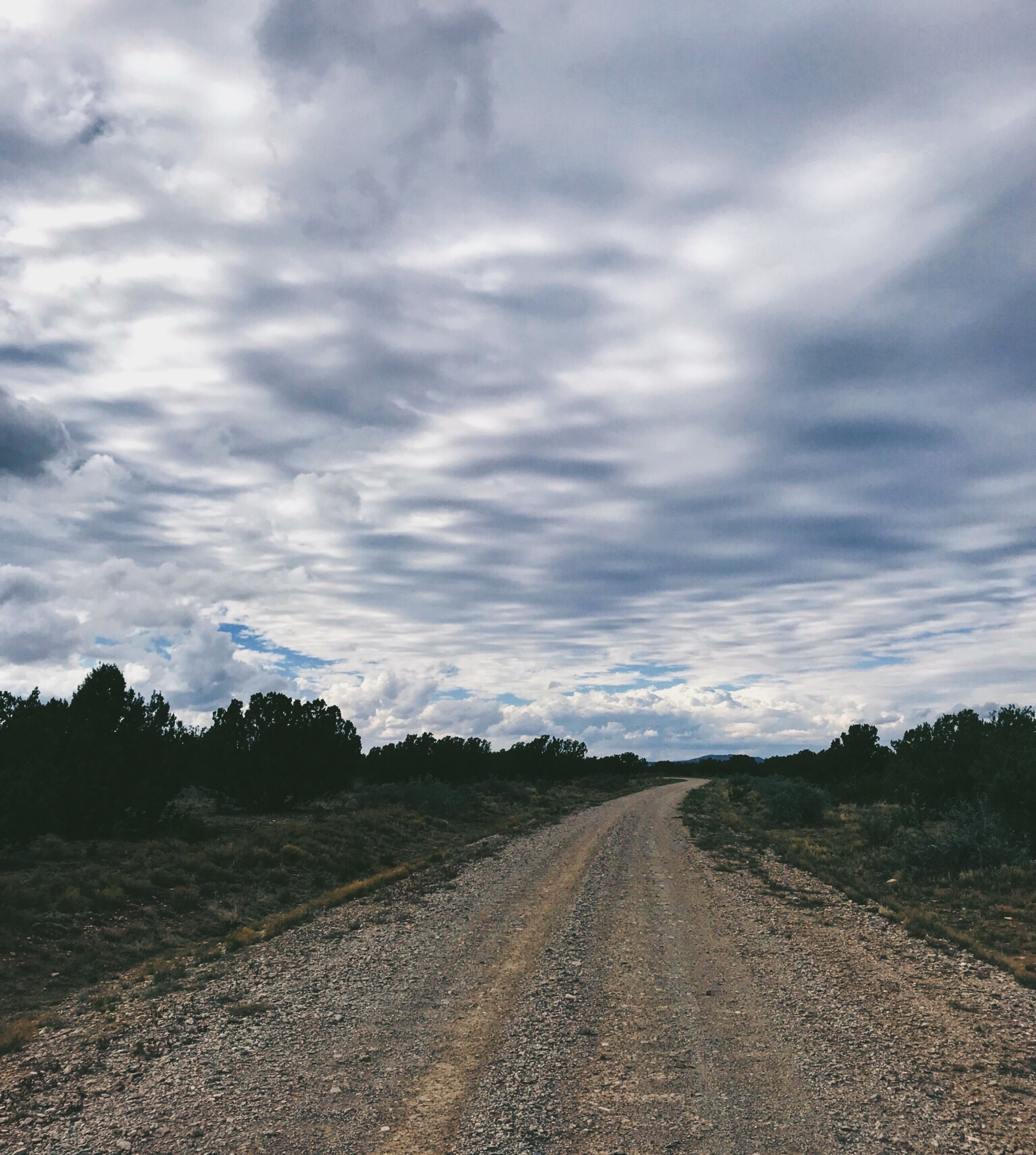 the rutted road the pathway my ceiling is the clouds hanging low