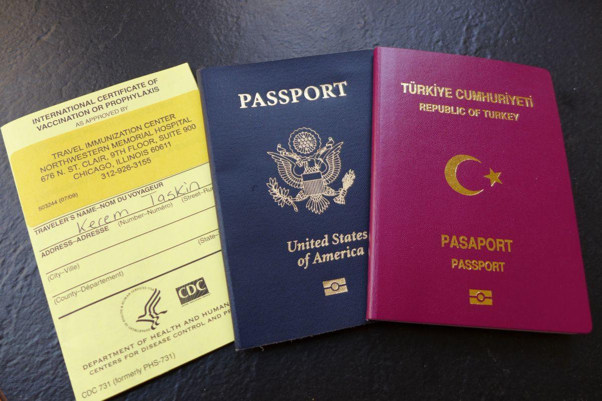 pasaport hizmeti in 2020 Passport online, Passport
