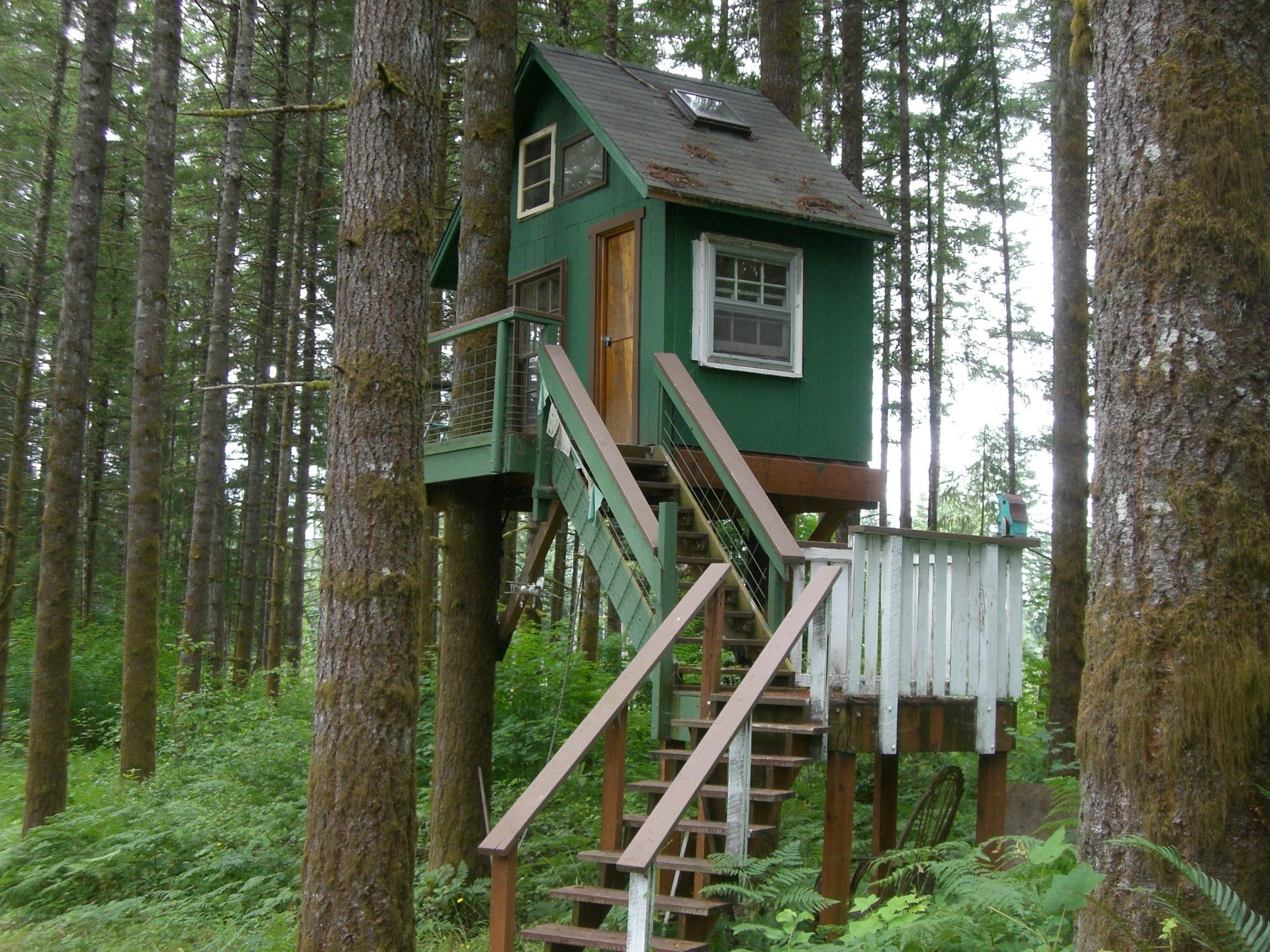 Simple Tree House Plans For Kids fun tree house plans for kids with green wooden exterior wall