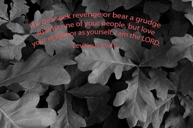 Wilson Imaging: Leviticus 19:18