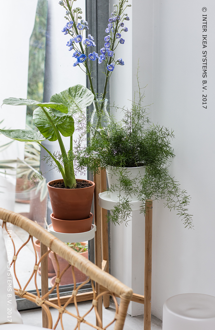 satsumas pi destal bambou blanc 78 cm on commence sentir le printemps pinterest rotin. Black Bedroom Furniture Sets. Home Design Ideas