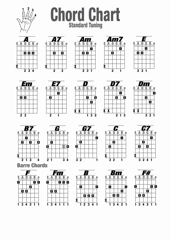 Chord Chart Acoustic Guitar Luxury Guitar Chords Charts Printable Guitar Chord Chart Basic Guitar Chords Chart Easy Guitar Chords