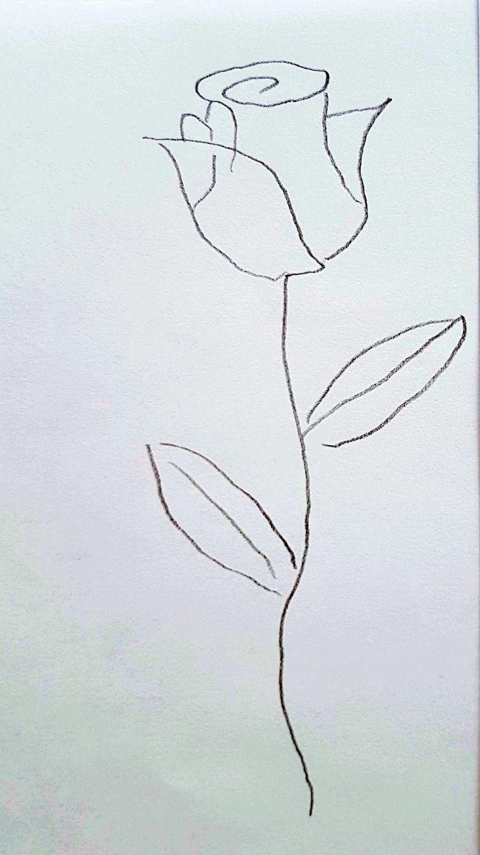 Anleitung zum Zeichnen einer Rose
