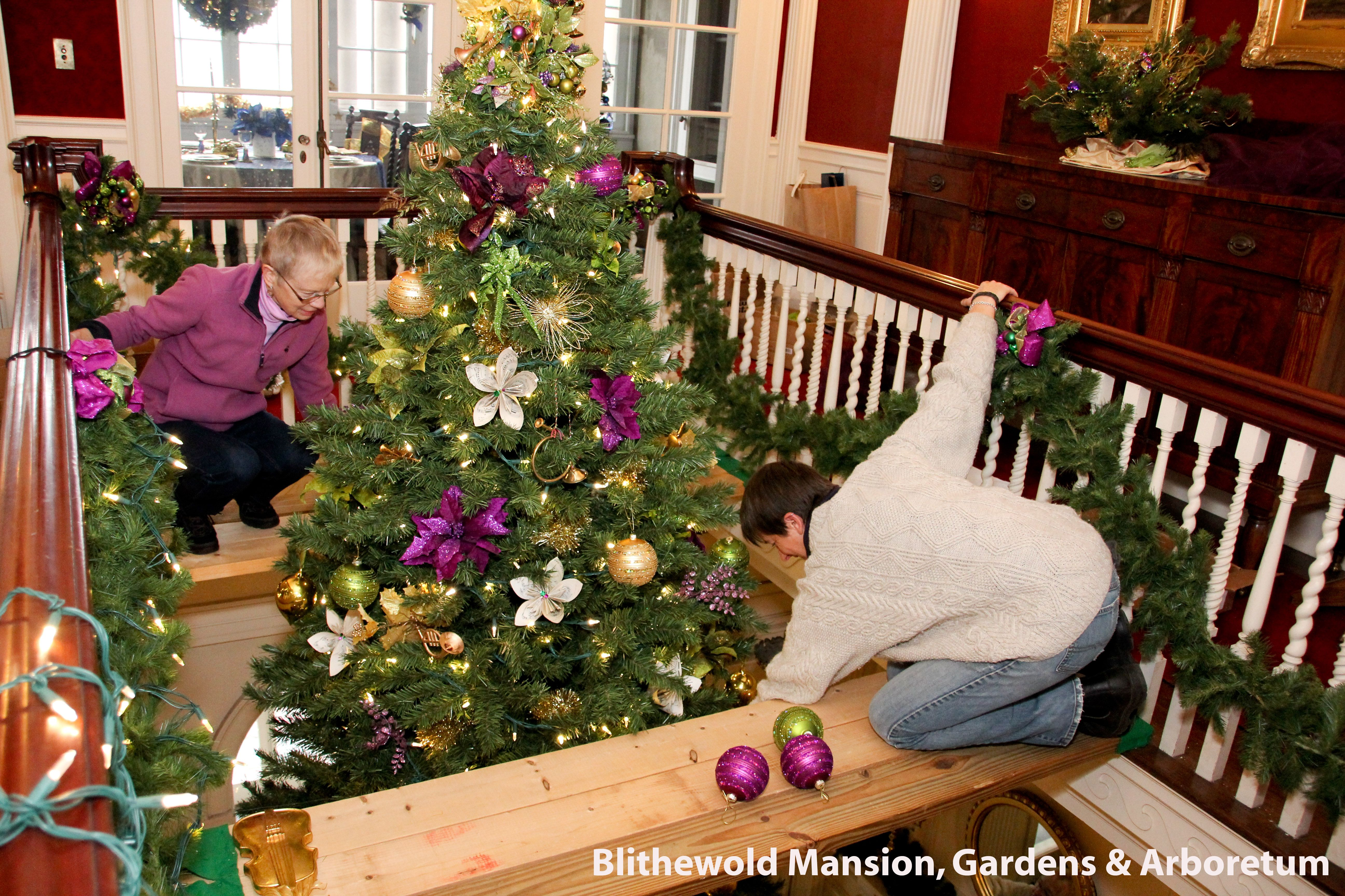Decorating our 18 foot Christmas Tree Blithewold Mansion (Photo by ...