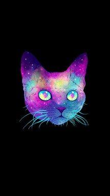 Black Cat Colors Galaxy Rainbow Tumblr Iphone Wallpaper