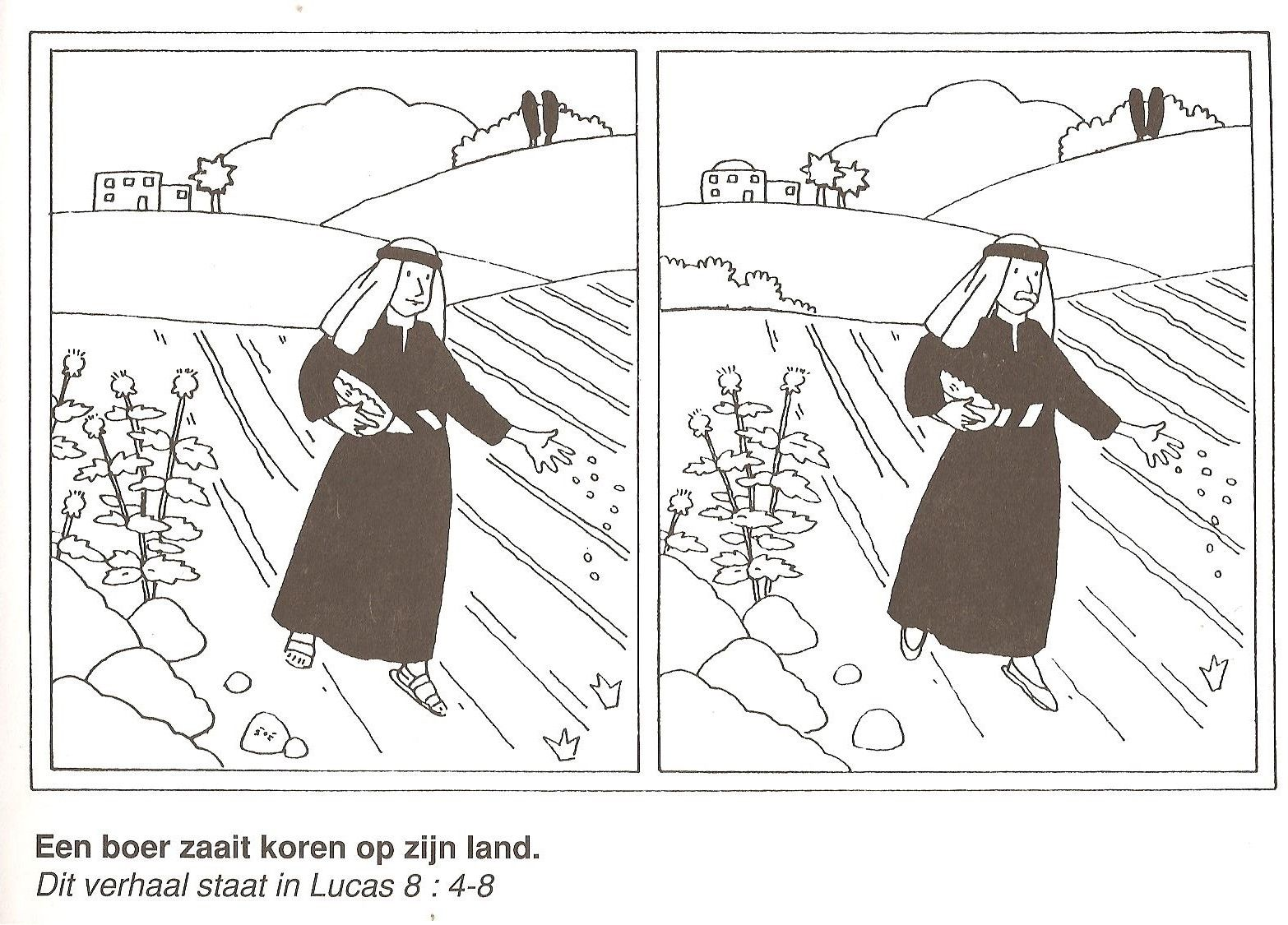 A Farmer Sowing Corn On His Land Parable Sower Find The 10