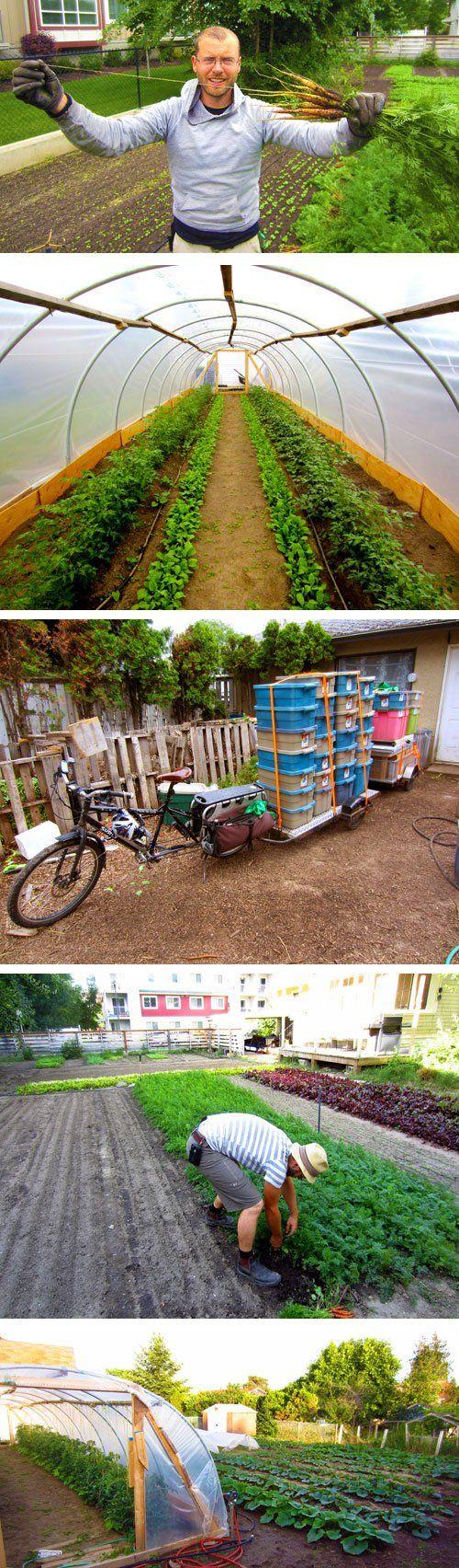 Spin Method Of Urban Farming Helps Novice Farmers Profit In The City Backyard Farming Urban Farming Garden Urban backyard farming for profit