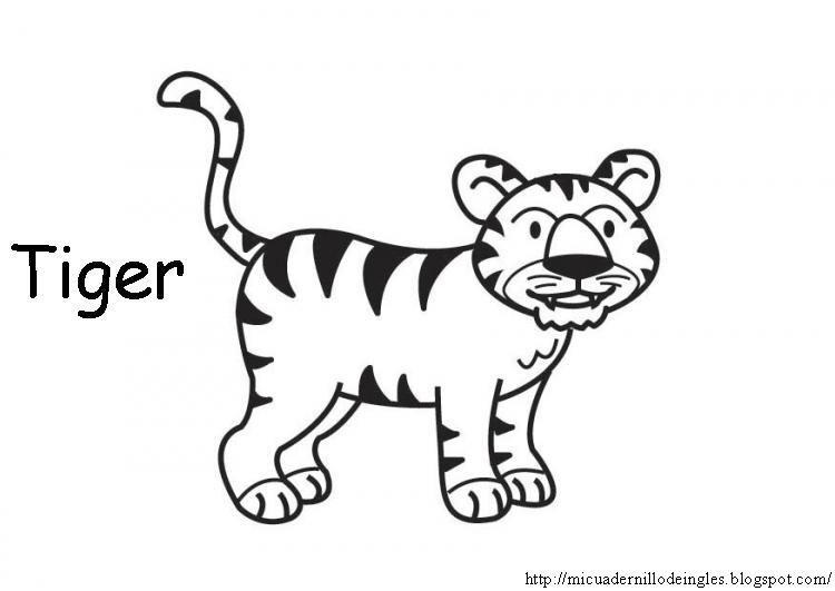 Animales Domesticos Y Salvajes Para Colorear Imagui Circus Theme Preschool Tiger Coloring Pages