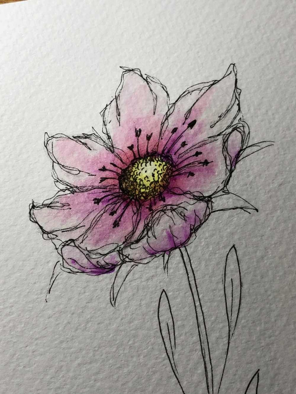 Blumen einfach zeichnen