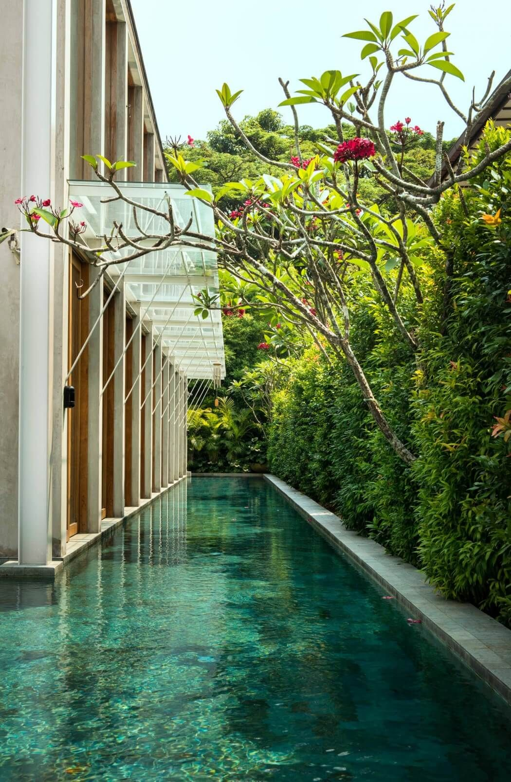 Bungalow In Singapore By Visual Text Architect Pool Pool Designs Swimming Pool Designs