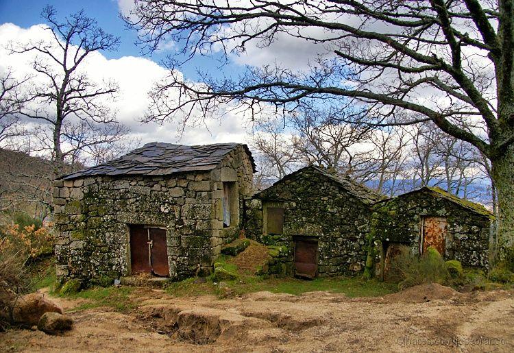 Olhares.com Fotografia | �Jos� Branco | Encosta leste do Alvão - Vila Real de Trás-os-Montes-Portugal