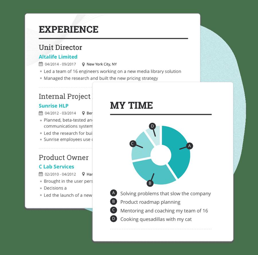 Professional CV & Resume Builder Pricing Enhancv Free