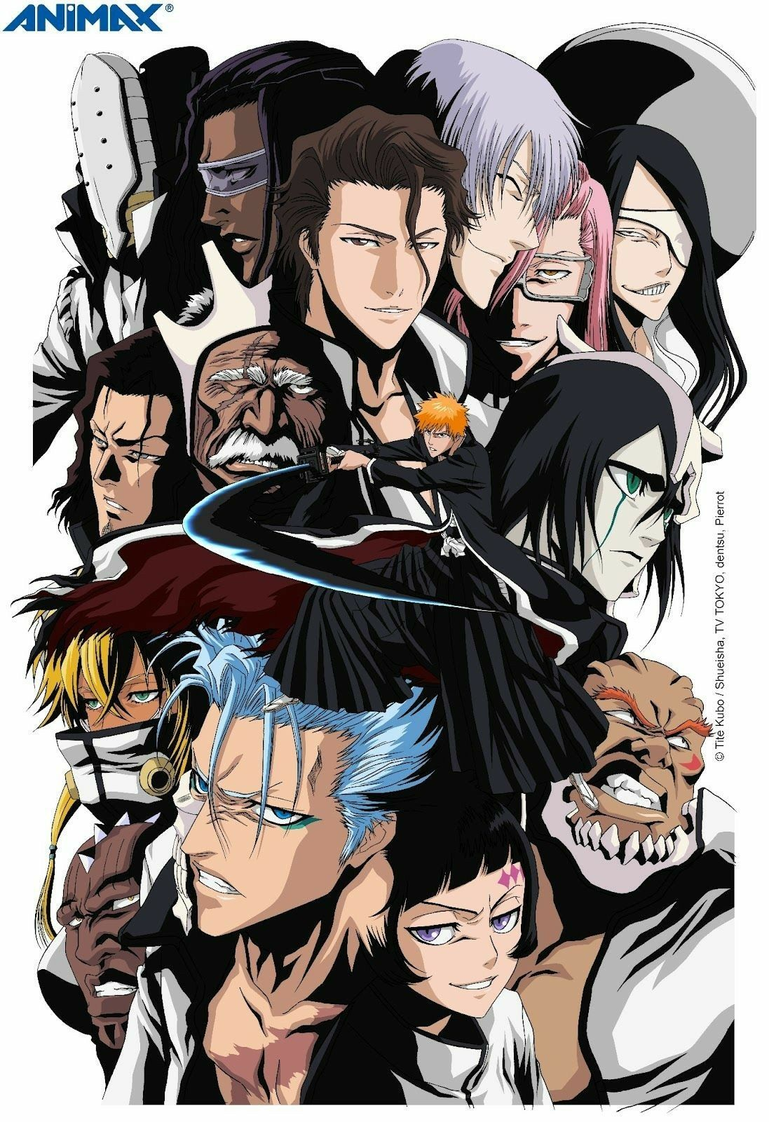 Pin by Siddharth Singh on anime Bleach anime, Anime