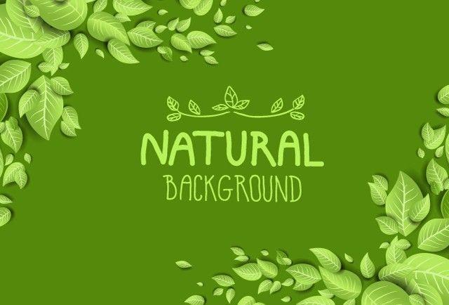 Green Natural Leaves Background Vector Leaf Background Leaf Nature Natural Background
