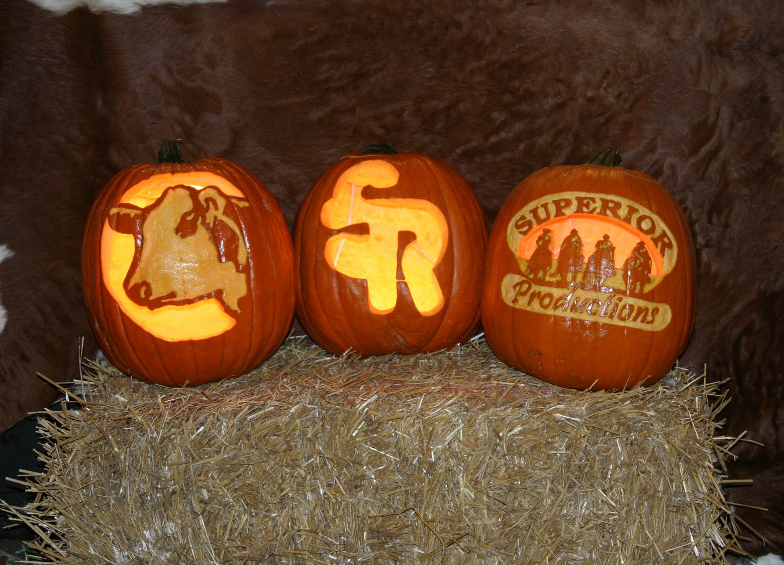 Love the cow. What would a cattle brand do to a pumpkin ...