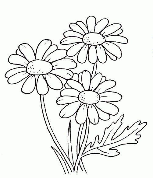Flowers 35 Coloring Pages Coloring Flowers Pages Blumenzeichnungen Blumenzeichnung Blumen Ausmalbilder
