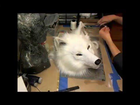 24+ Anime White Wolf Mask Background