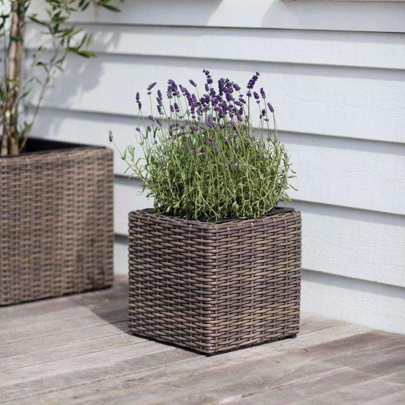 Small Square All Weather Rattan Planter Duck Barn Interiors Rattan Planters Square Planters Planters