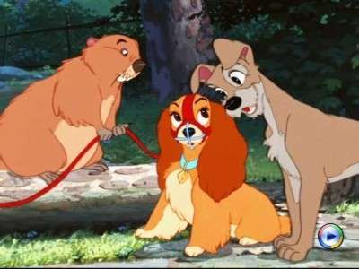 Beaver Lady Tramp Lady And The Tramp 1955 With Images Lady And The Tramp Disney Animated Movies Best Disney Movies