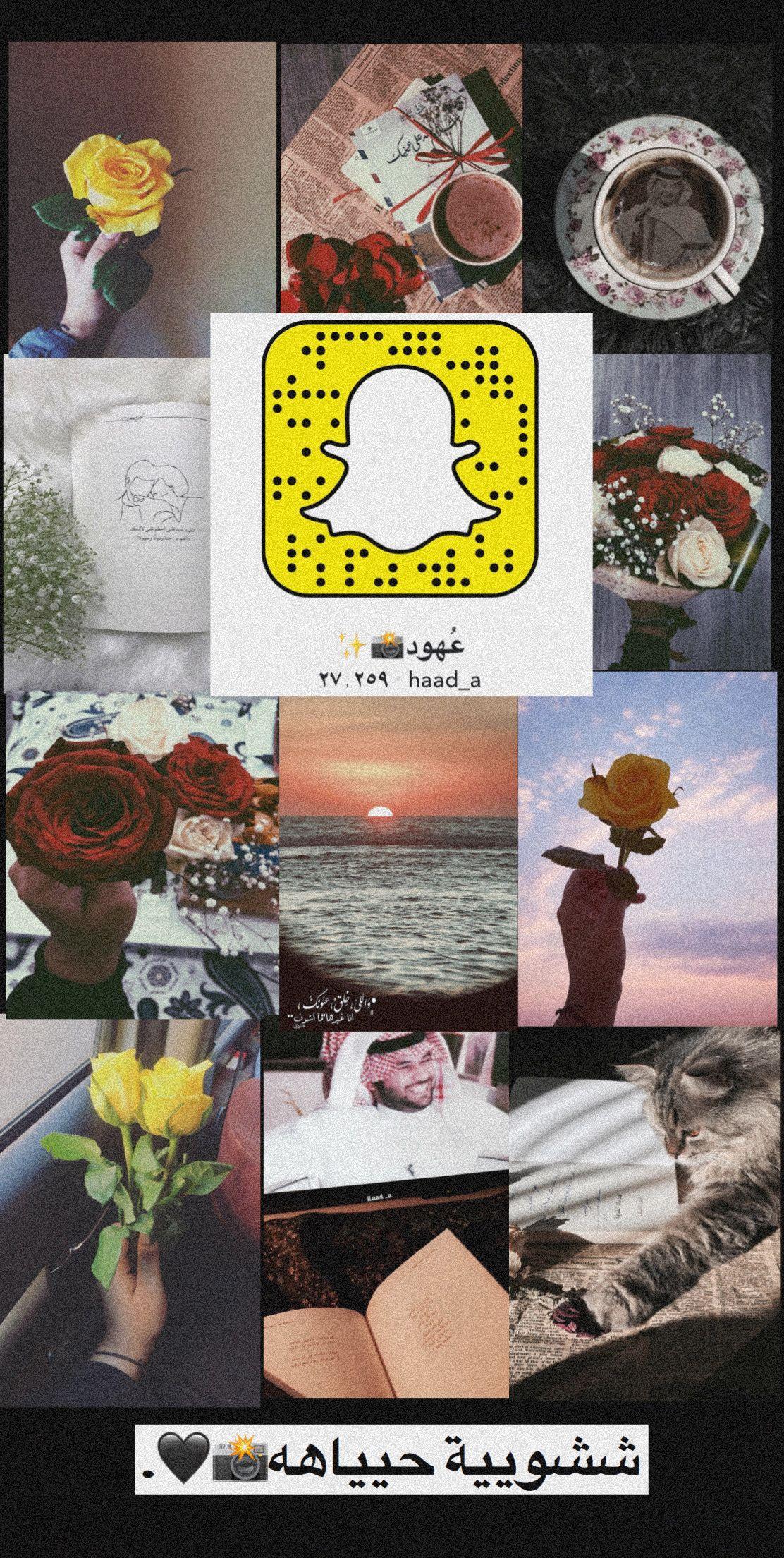 سنابات سناب تصويري تصوير لقطات ورد Snapchat Projects To Try Projects Snapchat