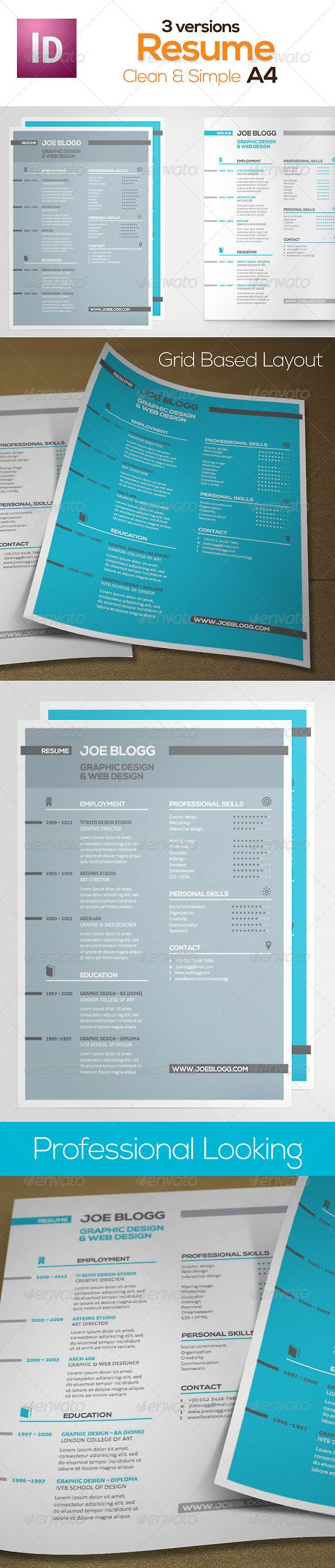 Pro Looking Resume Swiss Grid  Template Indesign Templates And