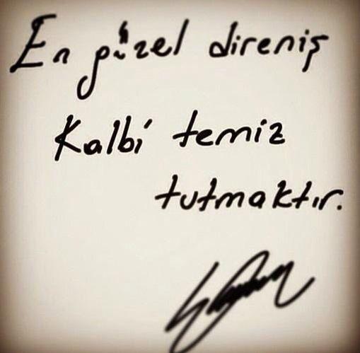 @sevvalcbnglu