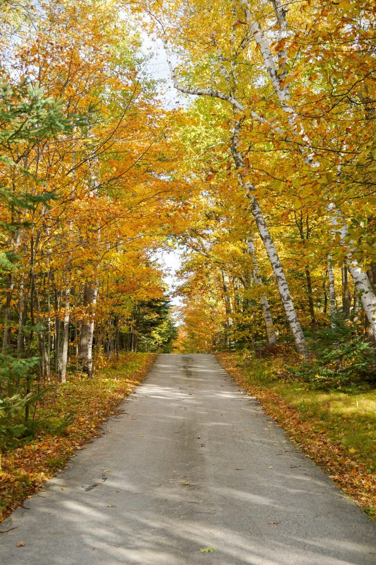 Fall Colors In Door County The Most Stunning Drive Through Northern Wisconsin Door County Letting Go Of Him Fall Colors