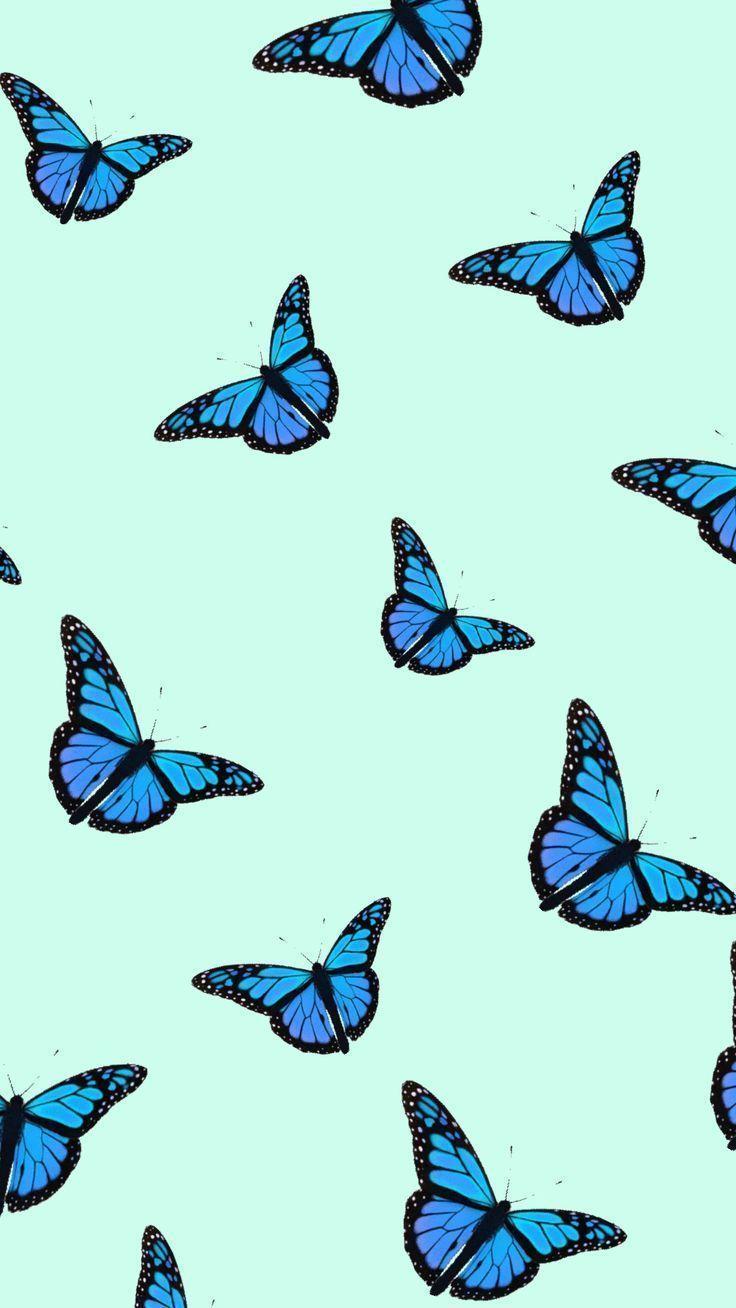 iphone wallpaper blue #wallpaperiphone #wallpaper#blue #iphone #wallpaper #wallpaperiphone