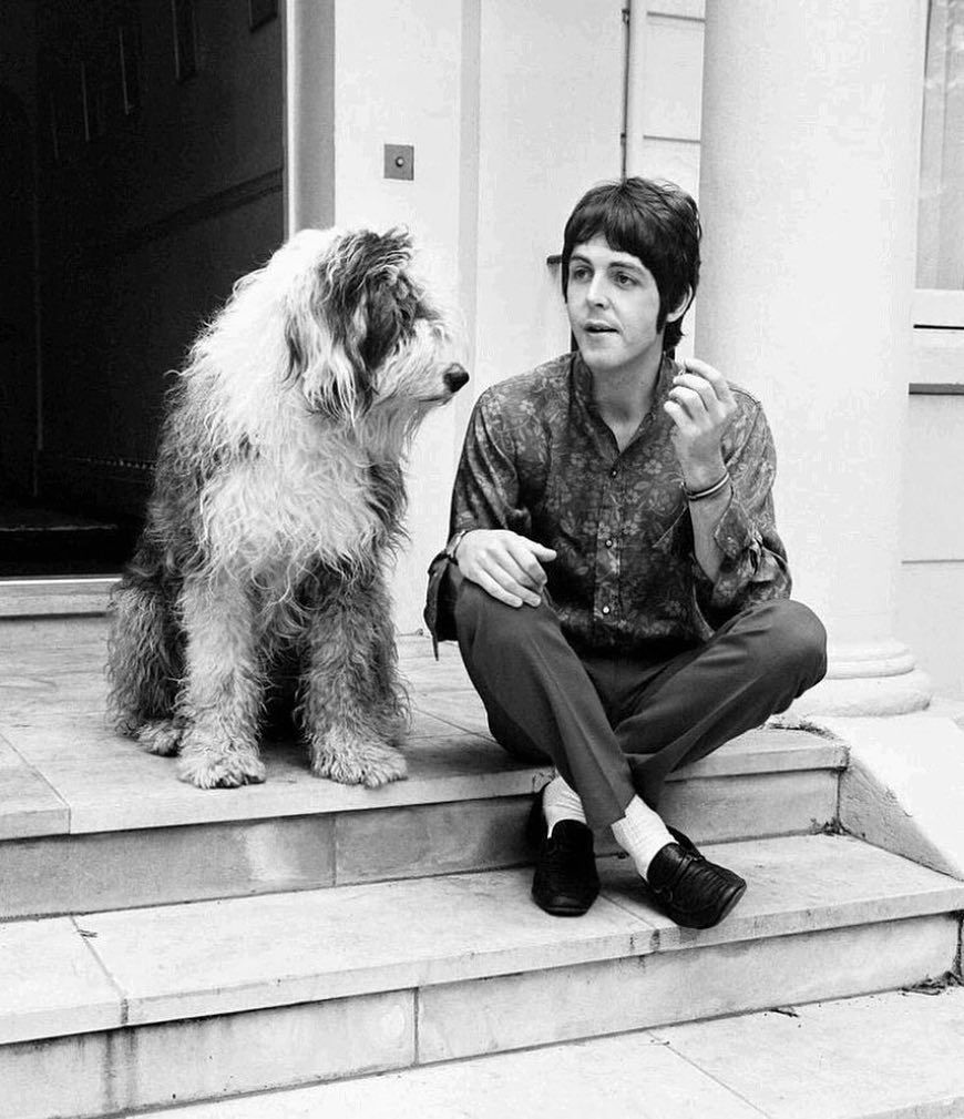 Paul McCartney And His Dog Martha 1968 Paulmccartney