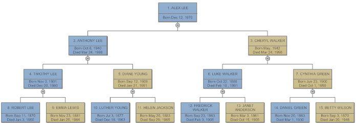 Family tree example Dimma Tree templates, Pedigree chart, Sample