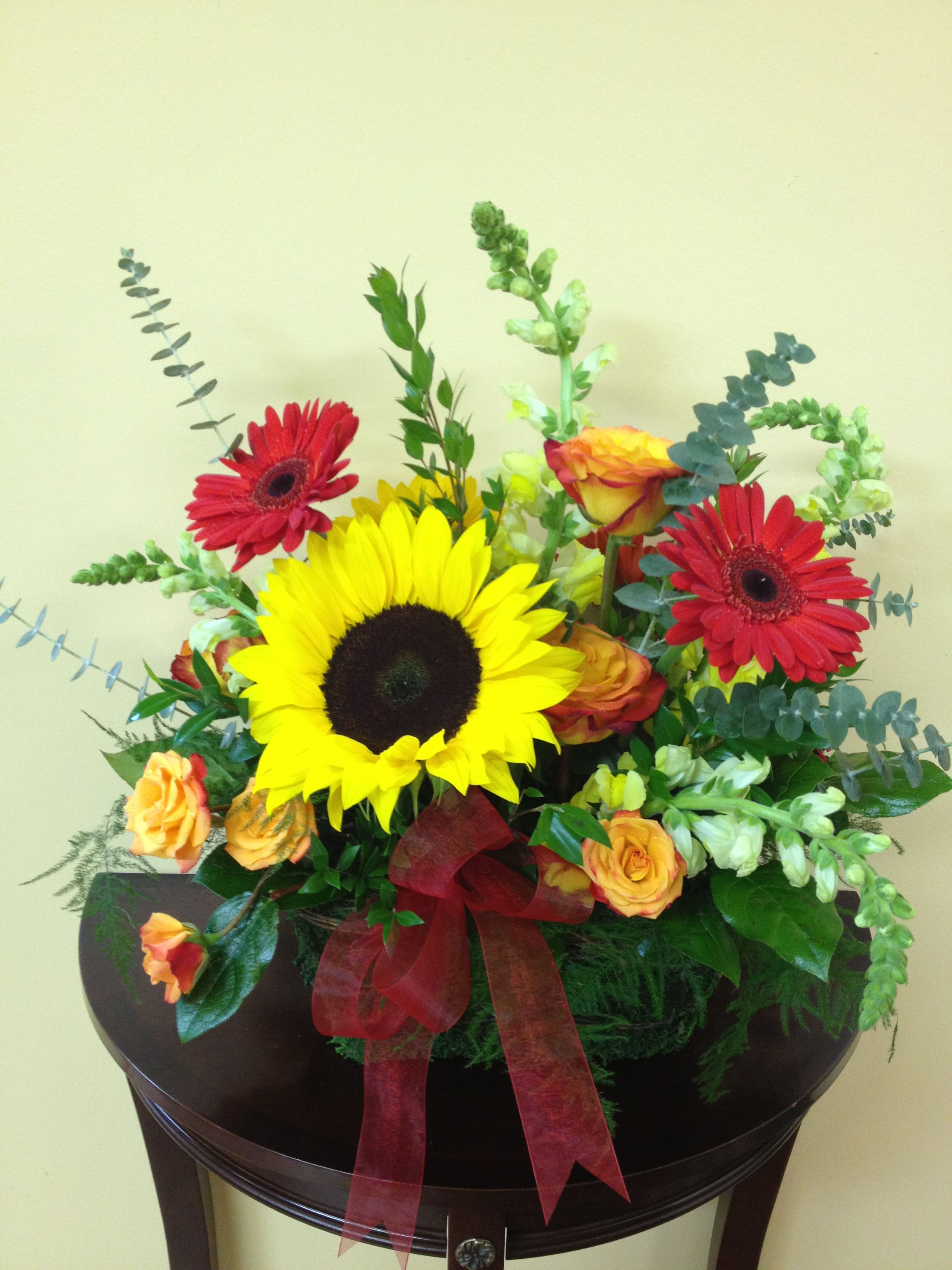 Darling Flowers Online Store Flowers Gerbera Daisy Fresh Flowers