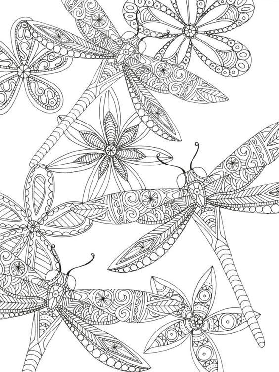 libelula - dragonfly | Zentangle | Adult coloring pages ...