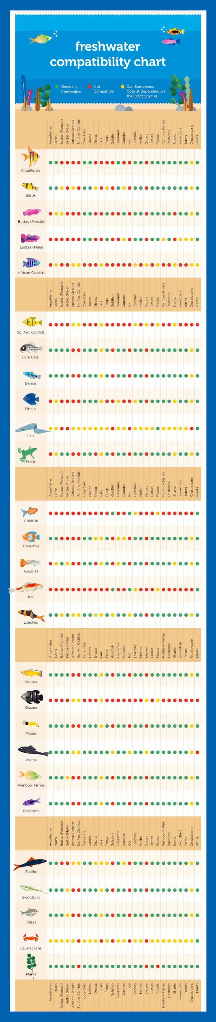 Freshwater Fish Compatibility Chart Fish Chart Freshwater Fish Fresh Water Fish Tank