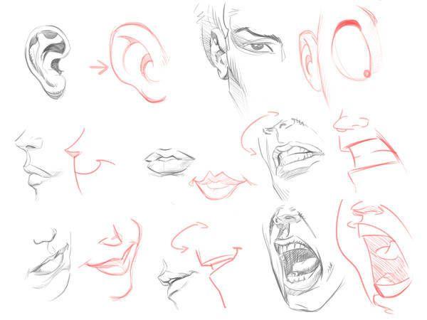 Dibujando En Diferentes Angulos 3 Aprender A Dibujar Caricaturas Dibujar Caricaturas Rostros De Dibujos Animados